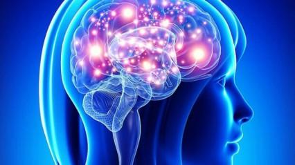 Как сохранить молодость и активность мозга в любом возрасте?